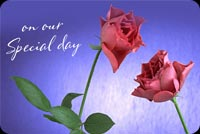 Anniversary email stationery. 2 Pink Roses On Pastel Background