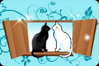 Anniversary email stationery. Black And White Cat Sitting On Window