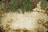 Christmas email stationery. Wonderful Season's Greetings Background