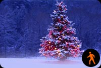 Animated Snowing Christmas Tree Stationery, Backgrounds