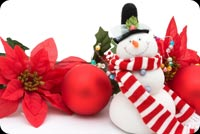 Snowman And Red Flowers Stationery, Backgrounds