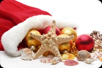 Starfish And Christmas Balls Stationery, Backgrounds
