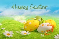 Special Easter Wishes! Stationery, Backgrounds