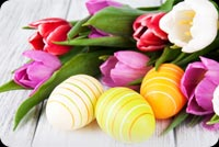 Colorful Easter Flowers Tulips, Eggs Decoration Stationery, Backgrounds