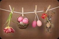 Hanging Brown Basket Eggs, Bunny & Flower Stationery, Backgrounds
