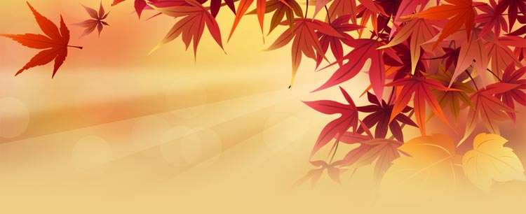 fall autumn email stationery stationary automn leaves and the sun
