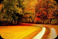 Beautiful Autumn For You Stationery, Backgrounds
