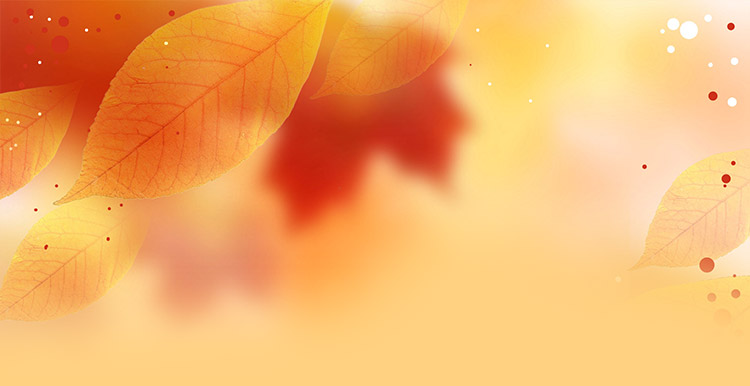 fall autumn email stationery stationary fall leaves background border