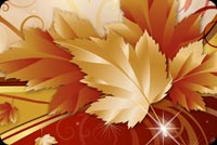 Fall autumn email stationery. Abstract Autumn Leaf