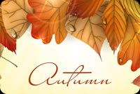 Fall autumn email stationery. Happy Autumn My Friend