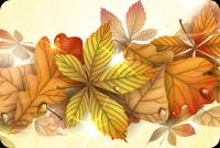 Fall autumn email stationery. A Beautiful Autumn Wish...