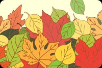Fall autumn email stationery. Share The Magic Of Autumn.