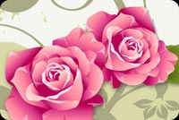 Flowers email stationery. 2 Roses In Vibrant Pink