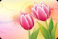2 Lovely Pink Tulips Stationery, Backgrounds