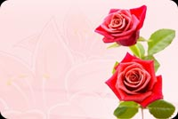 Flowers email stationery. Red Roses At Its Best