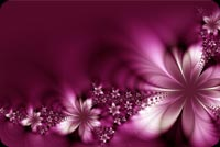 Flowers email stationery. Purple Flower Shade
