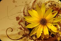 Yellow Flower And Brown Swirls Stationery, Backgrounds