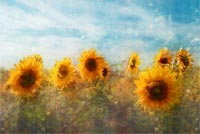 Amazing Sun Flowers Paiting Stationery, Backgrounds