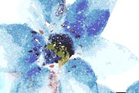 Blue Art Flower Stationery, Backgrounds