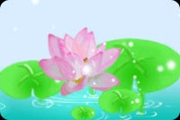 Pink Floating Water Lily  Stationery, Backgrounds