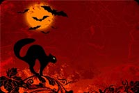 Halloween email stationery. Black Cat, Black Bats, Red Sky