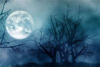 Halloween Moonlight Stationery, Backgrounds