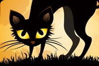 Halloween Black Cat Stationery, Backgrounds