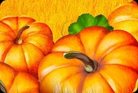 Pumpkin Patch Autumn  Stationery, Backgrounds
