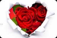 Love email stationery. Roses Heart Forever Love You