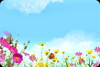 Nature email stationery. Colorful Flowers And Blue Skies