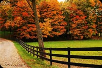Beautiful Fall Country Fence Stationery, Backgrounds