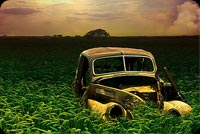 Nature email stationery. Abandoned Old Car