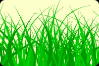 Green Blades Of Grass Stationery, Backgrounds