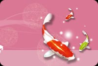 New year email stationery. Coy Fish For Luck