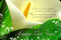 Happy New Year Flower Stationery, Backgrounds