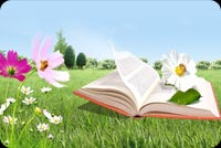 Spring email stationery. Book, Flowers And Grass