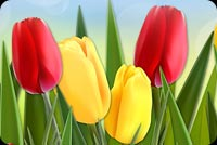 Happy And Colorful Spring Stationery, Backgrounds