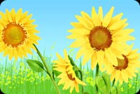 Sunflowers At Full Bloom Stationery, Backgrounds