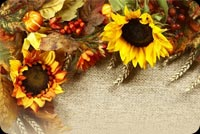 Thanksgiving Wishes Background Stationery, Backgrounds