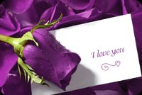 Valentines day email stationery. Purple I Love You Flower