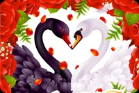 Valentine Heart Love Swans Stationery, Backgrounds