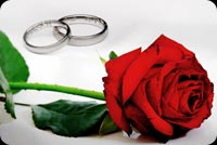 Wedding email stationery. Wedding Rings And A Rose