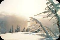 Warm Winter Scene Stationery, Backgrounds