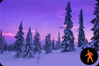 Animated Snowfall Forest Stationery, Backgrounds